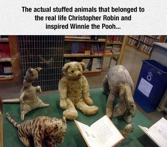 Winnie The Pooh Inspiration