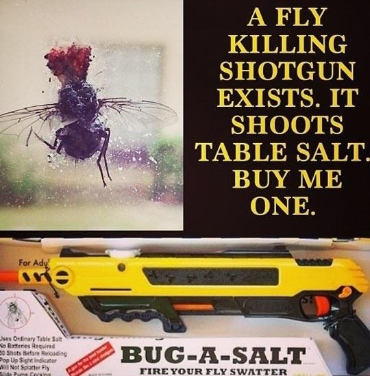 A shotgun for flies!