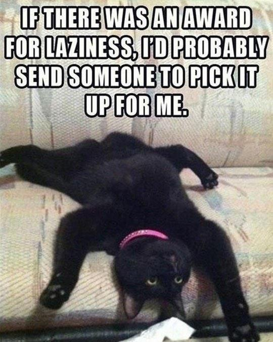 An Award For Laziness