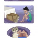 Cats just know…