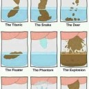 Different Types Of Poop
