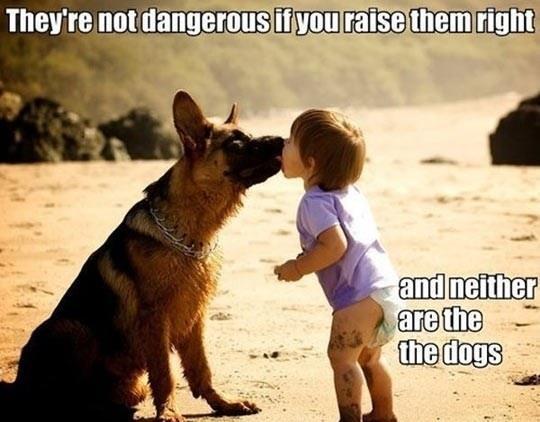 Not That Dangerous