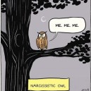The Narcissistic Owl