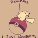 Like A Pokeball