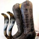 Snakes In My Boots