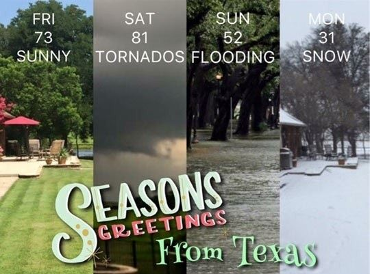 Texas In A Nutshell