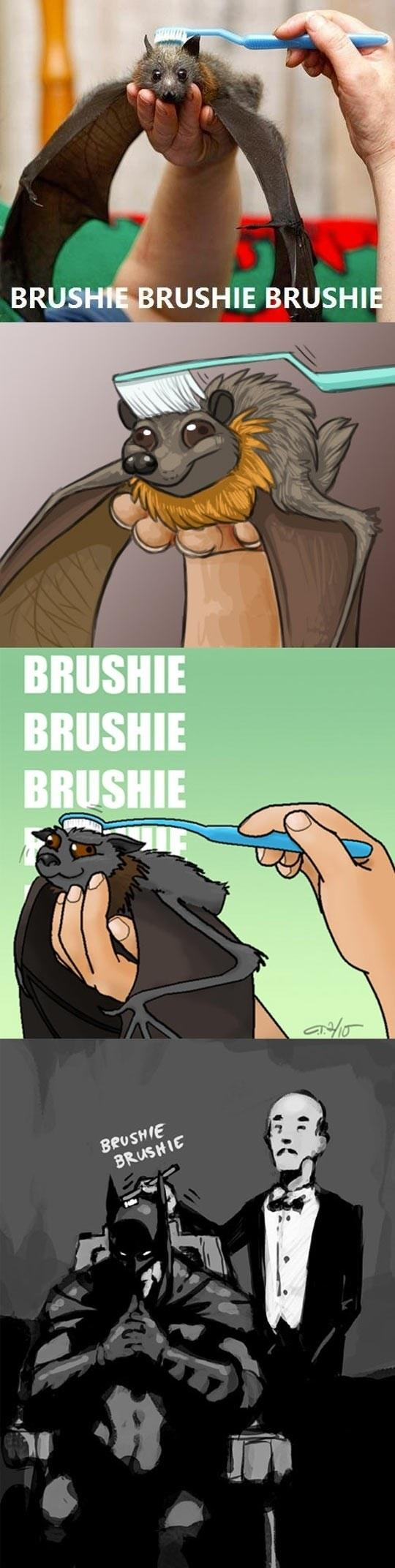 Brushing A Bat's Head