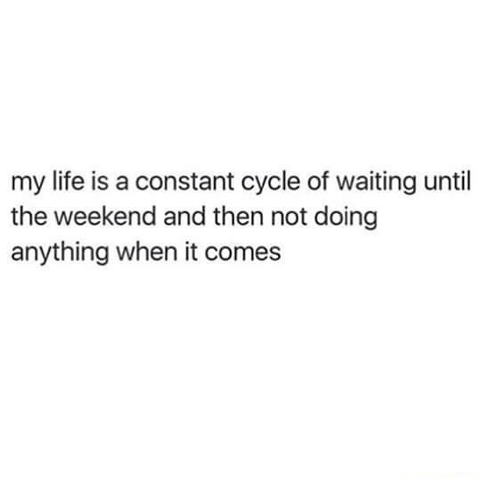 My cycle of life