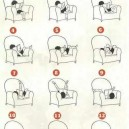 Some Reading Positions