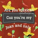 Perfect pick up line