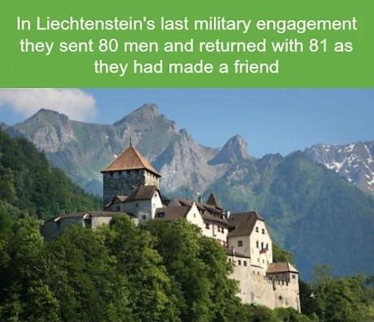 The army of Liechtenstein