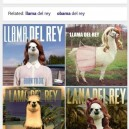 Google Keeps On Delivering   Lama Del Rey