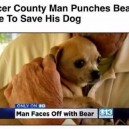 Pinches bear to save puppy