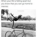 Memes solve everything!