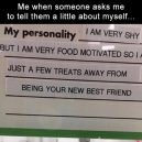 Tell a little about yourself