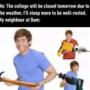 Dang it neighbour
