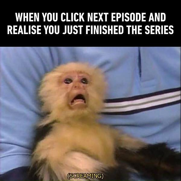 The end of the series
