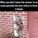 You don't know the answer but refuse to leave it blank